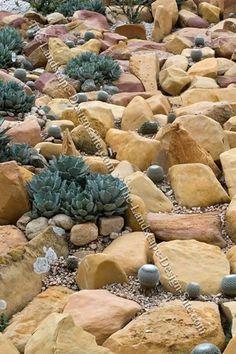 rock garden xeriscaping idea with cactus