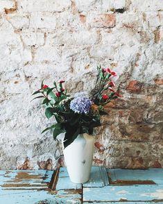 Schöne Blumen bei @cecilemarleen ☕️♥️