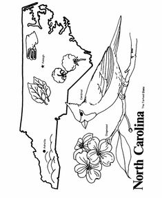 alaska coloring page education pinterest coloring coloring pages and alaska
