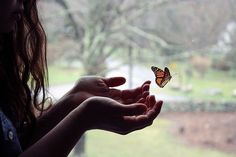 Hold a butterfly