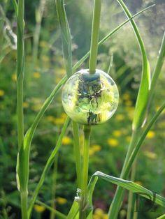 My favorite one, een glaskraal geinspireerd op de natuur