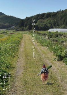 torishige00