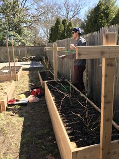 Raspberry Double height Bed (Raspberries have deep root systems) with Trellis for support