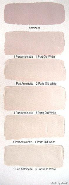 Blush wall colors