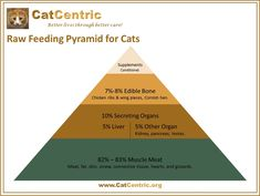 The CatCentric Raw Food Pyramid for Cats makes it easy to understand what a balanced raw diet looks like.