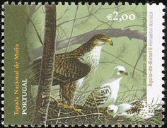 Bonelli's Eagle stamps - mainly images - gallery format