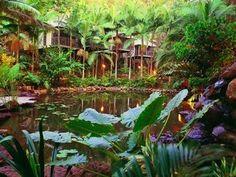 Daintree Ecolodge, Australië