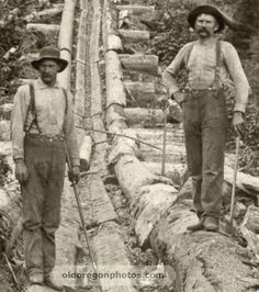 Log Chute with Ox Teams - 1890s.  These are similar to the log chutes that my ancestors built.  I remember my Dad telling me that they had to be very careful in dry weather, to make sure to keep the chutes wet, so that fires would not break out.