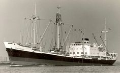 Puerto Limon, Concept Ships, Oldenburg, Parthenon, Steamer, Sailing Ships, Amsterdam, Engine, Container