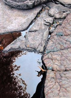 """E.P. Lewandowski - Stillwater X.  Detailed rendering of standing water along a rocky landscape setting. One of three studies that received the GRAND PRIZE Award at the 2012 National Southwest Contemporary Realism Competition.  Colored Pencil Drawing  15.2""""x 21"""" unframed"""