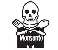 List Of Monsanto Free Seed Companies   in5d.com