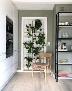 Derfor har Pernille vundet en pris for sine farvevalg derhjemme - Modern Interior Plants, Diy Interior, Interior Design, Behr, Decor Room, Home Office Decor, Scandinavian Design, House Colors, My Dream Home