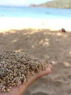 Kuta Beach known as pepper beach because of it sand similiar as pepper