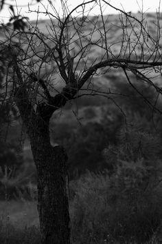 #photogtaphy# #blackandwhite# #siyahbeyaz# #fotoğraf#