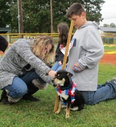 "Dogs will have their day on Saturday at the annual ""Bark in the Park"" fundraiser for the City of Tullahoma Animal Shelter."