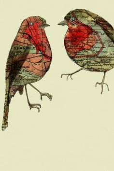 Robins by Jenny Capon (from a series of five Stockholm Map Birds)