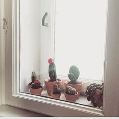 """Etsy Gohli (@cgohli) auf Instagram: """"Es gibt Neuzugänge in meinem #etsyshop ✨✨✨✨ 🌵🌵🌵#Kakteen gibt es ab jetzt bei mir zu kaufen.…"""" Etsy Shop, Knit Crochet, Knitting, Instagram Posts, Handmade, Beautiful, Design, Cacti, Hand Made"""