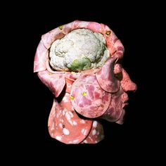 The Russian artist Dimitri Tsykalov creates strange edible anatomical sculptures using meat, fruits and vegetables.