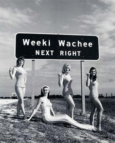 Neat photograph of the Weeki Wachee Springs Mermaids 1967