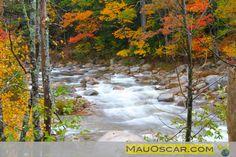 Cores de Outono em New Hampshire