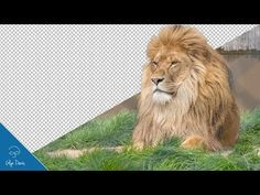 How to Fake Compositing Grass: PHOTOSHOP TUTORIAL #53 - YouTube