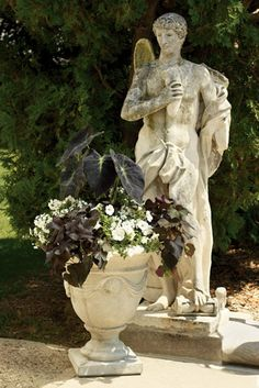 Container Garden Design - Foliage and Texture   Proven Winners