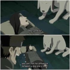 Neji can't tell the difference between Kiba and Akamaru? I miss him...