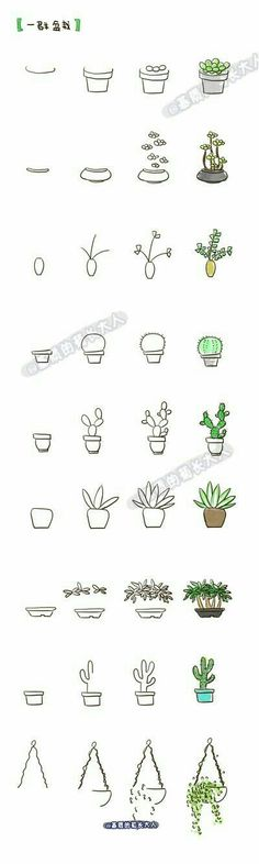 How to draw a cacti in a pot