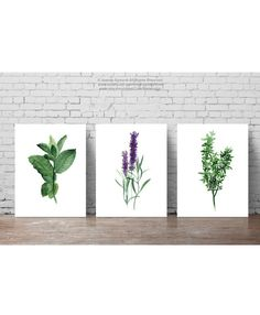 Mint Lavender Thyme Print, Herbs set 3 Herb Kitchen Poster, Home Garden Green Wall Art, Botanical Watercolor Painting, Dining Room Decor