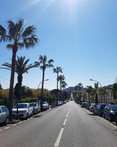 Hyères Les Palmiers sans filtre #hyeres #palmier #printemps #soleil #porquerolles #commerce #patrimoine #histoire #culture