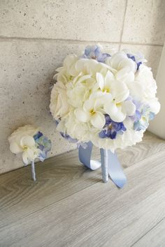greenplus flowers ❤︎
