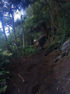 Kalalau Trail (Kauai) - 2018 All You Need to Know Before You Go (with Photos) - TripAdvisor