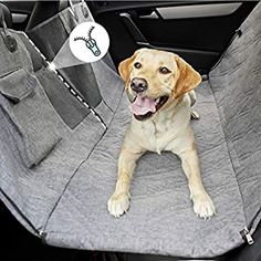 Amazon.com: DakPets Dog Car Seat Covers - Pet Car Seat Cover Protector – Waterproof, Scratch Proof, Heavy Duty and Nonslip Pet Bench Seat Cover - Middle Seat Belt Capable for Cars, Trucks and SUVs: Automotive Dog Cover For Car, Best Car Seat Covers, Back Seat Covers, Puppy Car Seat, Dog Car Seat Belt, Dog Car Seats, Auto Suv, Dog Hammock For Car, Pet Dogs