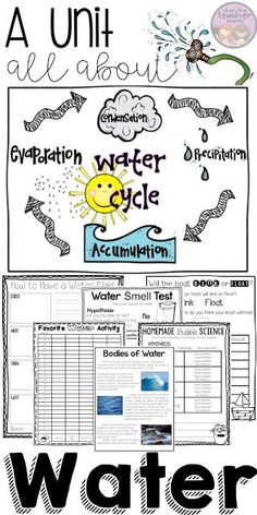 Teach your students about the water cycle, sink and float, bodies of water, bubbles, and more! This is one of my FAVORITE thematic units to tea. Free Teaching Resources, Teaching Activities, Teaching Science, Teaching Tips, Grade 2 Science, Science Lessons, Water Cycle Activities, Science Classroom, Mirrors