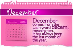 The origin of months, based on the Moon's cycle around the Earth, assisted in noting the time and fragmenting long seasons into small time periods. Let's look into the meanings of the months of the year. Latin Words, Months In A Year, Meant To Be, Periodic Table, December, Sayings, Witchcraft, Conversation, Image