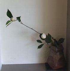 ikebana--tsubaki Ikebana Arrangements, Floral Arrangements, Sogetsu Ikebana, Japanese Flowers, Art Floral, Wabi Sabi, Flower Designs, Bonsai, Ceramics