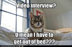 Lil Bub video interview shock