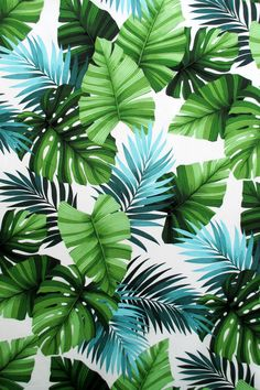Fabric Leaves of Lihue Green Hawaiian Leaves on Off White Tropical Foliage Large Scale Print Last One Yard