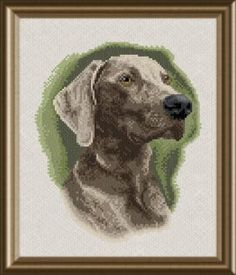 Weimaraner - cross stitch pattern designed by Marv Schier. Category: Dogs.