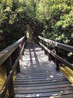 Garden Bridge, Deck, Outdoor Structures, City, Outdoor Decor, Close Up, Nature, Houses, Front Porches