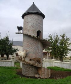 The Goat Tower - a farmer in South Africa has built this tower for his goats to live in, acknowledging the fact that goats love to climb. goats, farmers, anim, goat tower, towers, goat castl, south africa, place, garden