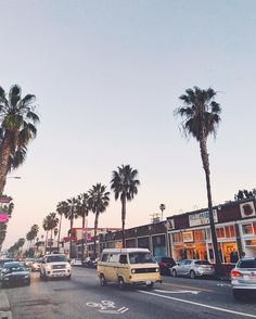 venice beach / abbot kinney / palm trees / california / los angeles / retro / sunset / photography / instagram ideas / vsco / @_kellycreative_