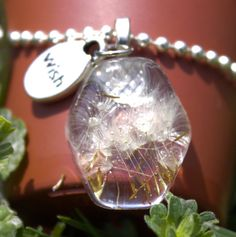 Real Dandelion Seeds in resin pendant with Wish metal by GreyGyrl, $14.00