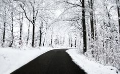 Winter Scenery - Wallpapers,Backgrounds,Pictures,Photos,Laptop Wallpapers
