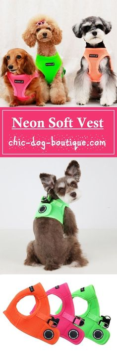 The popular Puppia Soft Vest Harness is now available in three bright neon colors - orange, pink and green! Not only is this dog harness brilliant in color, it's genius design, patented by Puppia, is a best-seller for it's quality, comfort, style and ease of use. This jacket style vest is made of 100% polyester air-mesh that is lightweight, soft and breathable. To use, have your dog step into the harness and then secure it at the back with the quick-release buckle and Velcro closure.