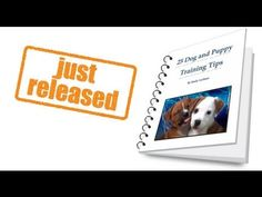 25 Dog and Puppy Training Tips- Ebook
