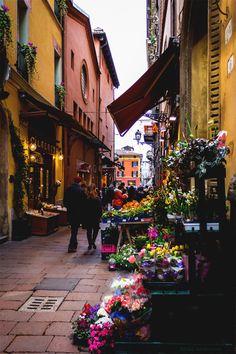 """""""The Elysian Fields....."""" — wanderlusteurope: Flower market in Bologna"""