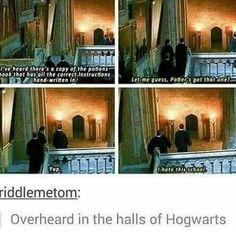 Harry Potter Puns, Harry Potter Universal, Harry Potter World, Hogwarts, Slytherin, Yer A Wizard Harry, Drarry, Fantastic Beasts, Humor