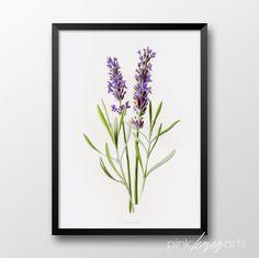 Handdrawn lavender print Printable lavender Wall by PinkLemonArts