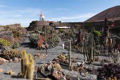 Jardín de Cactus de Lanzarote, Lanzarote (Islas Canarias, España) | Traveler